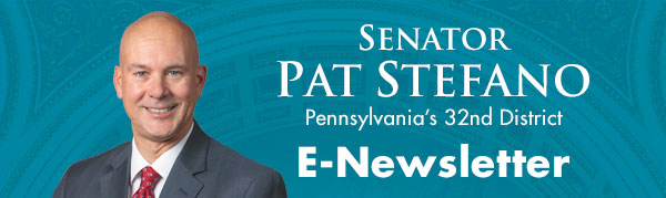 Senator Pat Stefano E-Newsletter